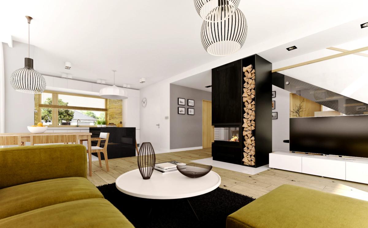 projekt domu Hary 1 wiz9
