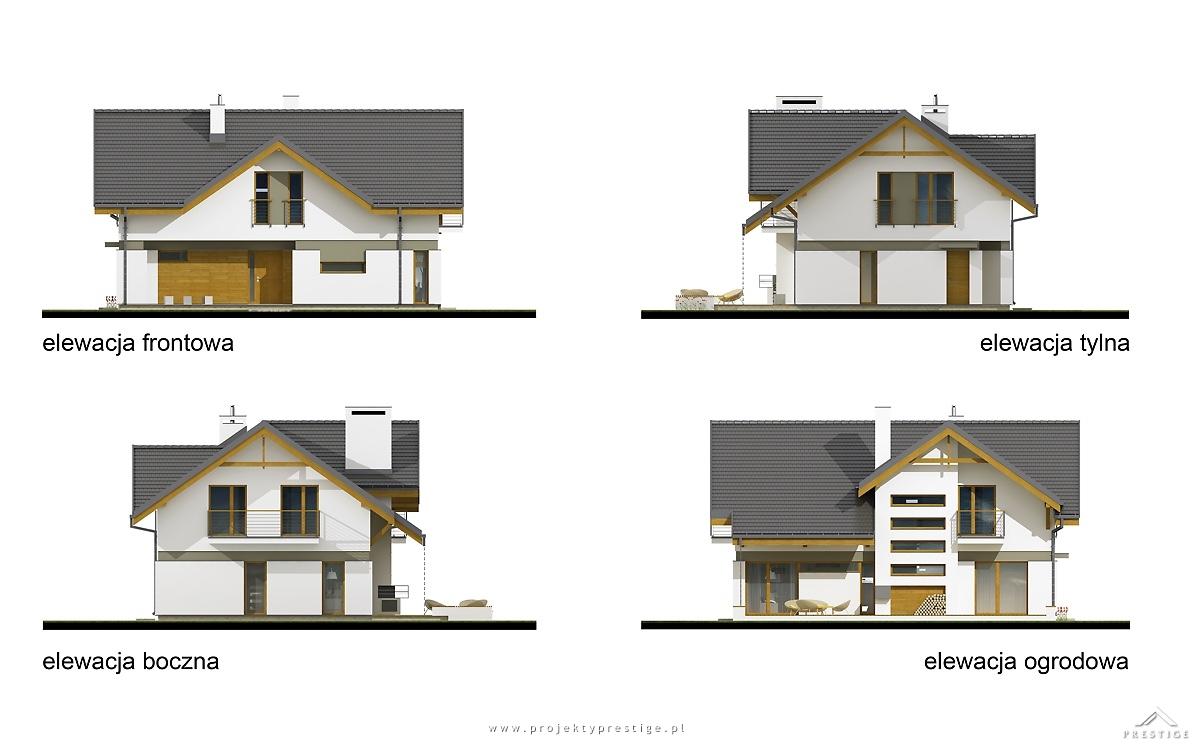 Projekt domu Wiliam II elewacja