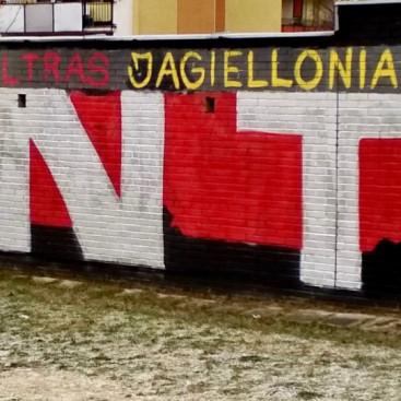 projektyprestige.pl - projekty domow - artykul o muralach - 14