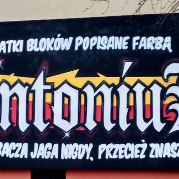 projektyprestige.pl - projekty domow - artykul o muralach - 18
