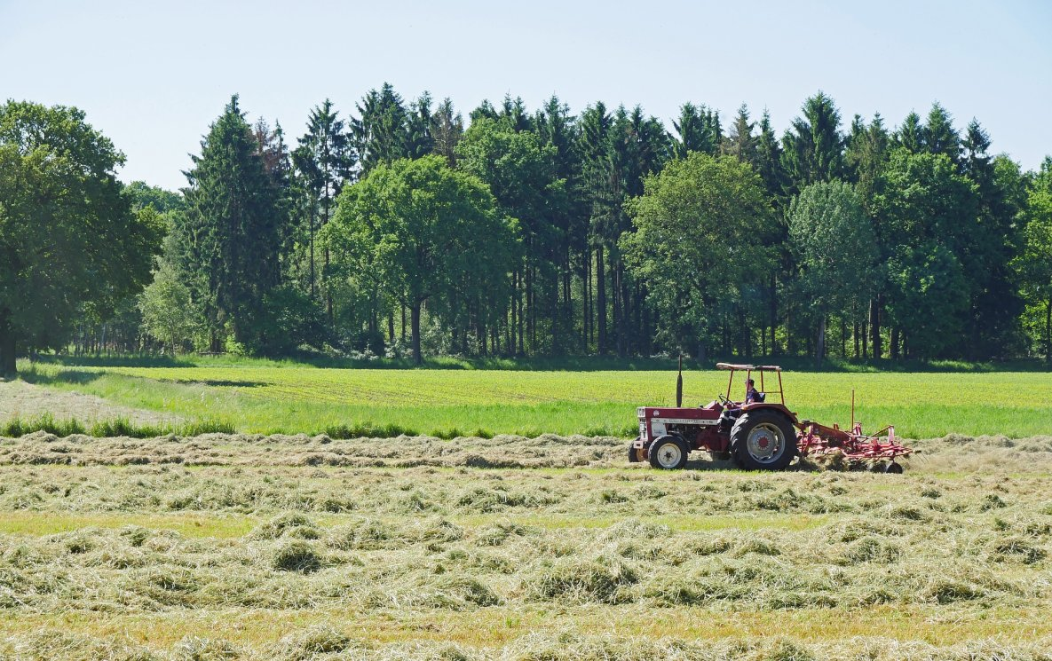 wybór działki budowlanej - traktor
