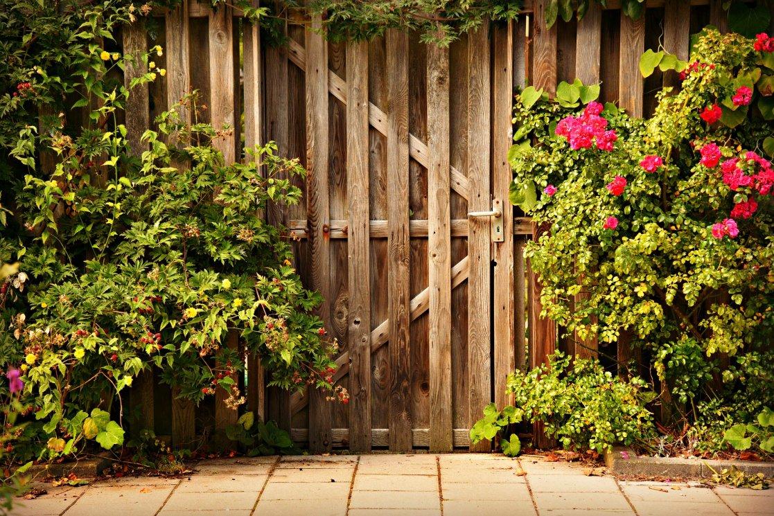 wooden-door-3652660_1920